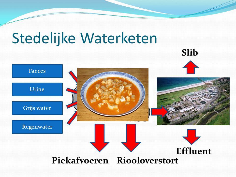 Stedelijke Waterketen Faeces Urine Grijs water Regenwater Energie Nutriënten (fosfaten) Basisafvoer – Drinkwater Toegevoegde waarde (ABC = Active, Beautiful, Clean)