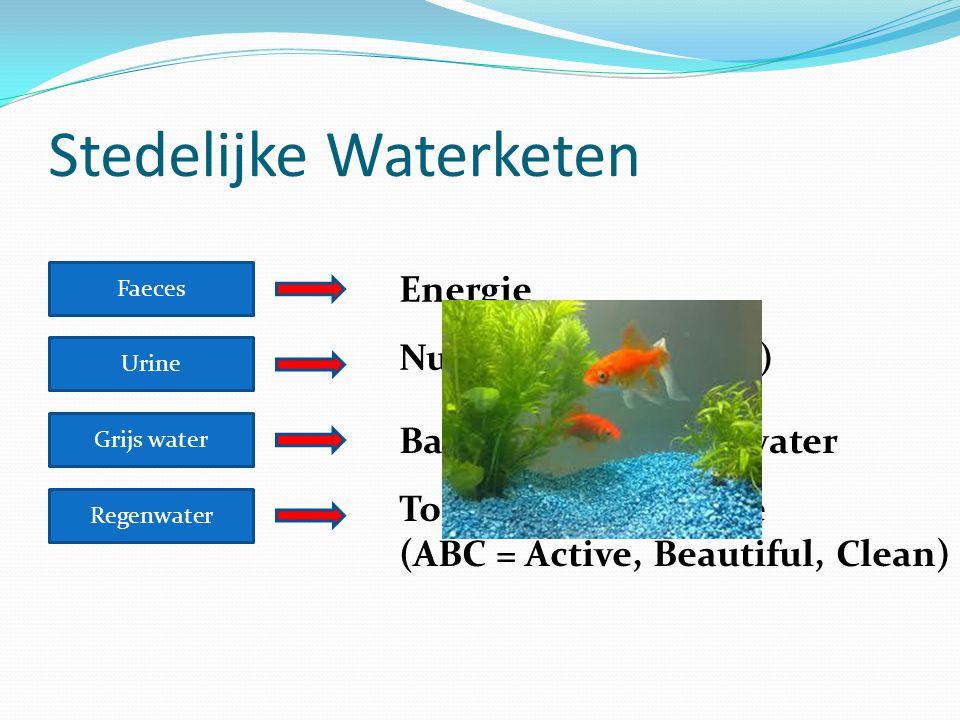 Stedelijke Waterketen Faeces Urine Grijs water Regenwater Energie Nutriënten (fosfaten) Basisafvoer – Drinkwater Toegevoegde waarde (ABC = Active, Bea
