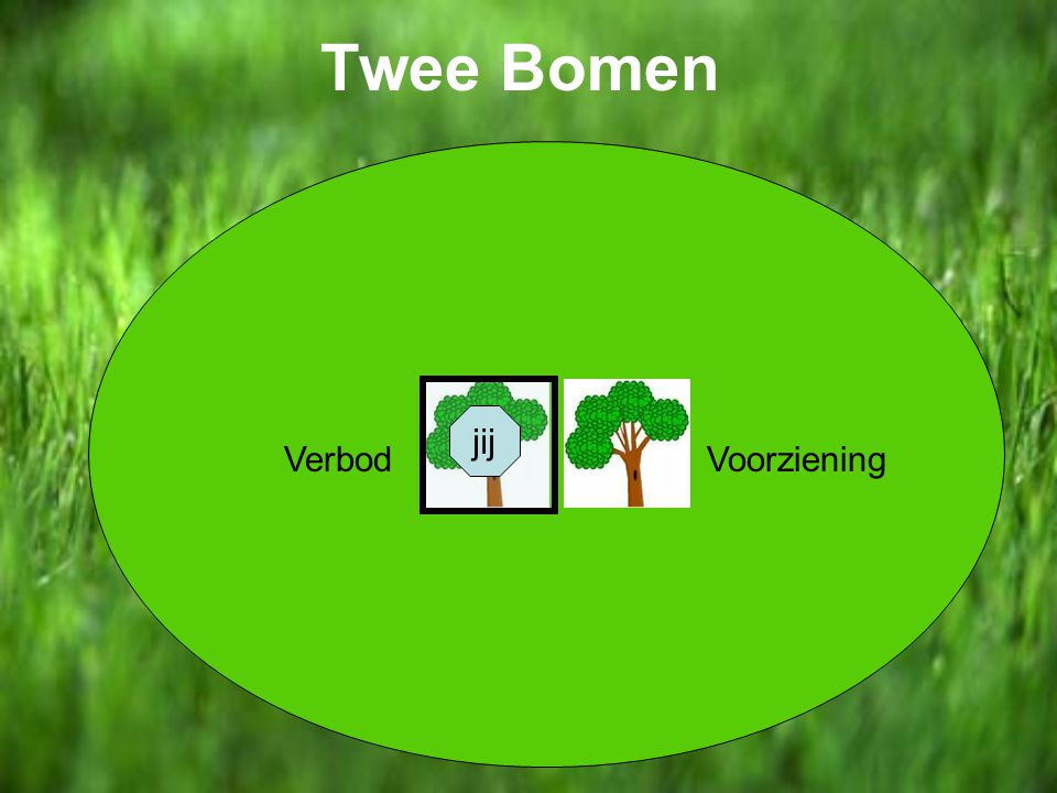 Twee Bomen VoorzieningVerbod jij