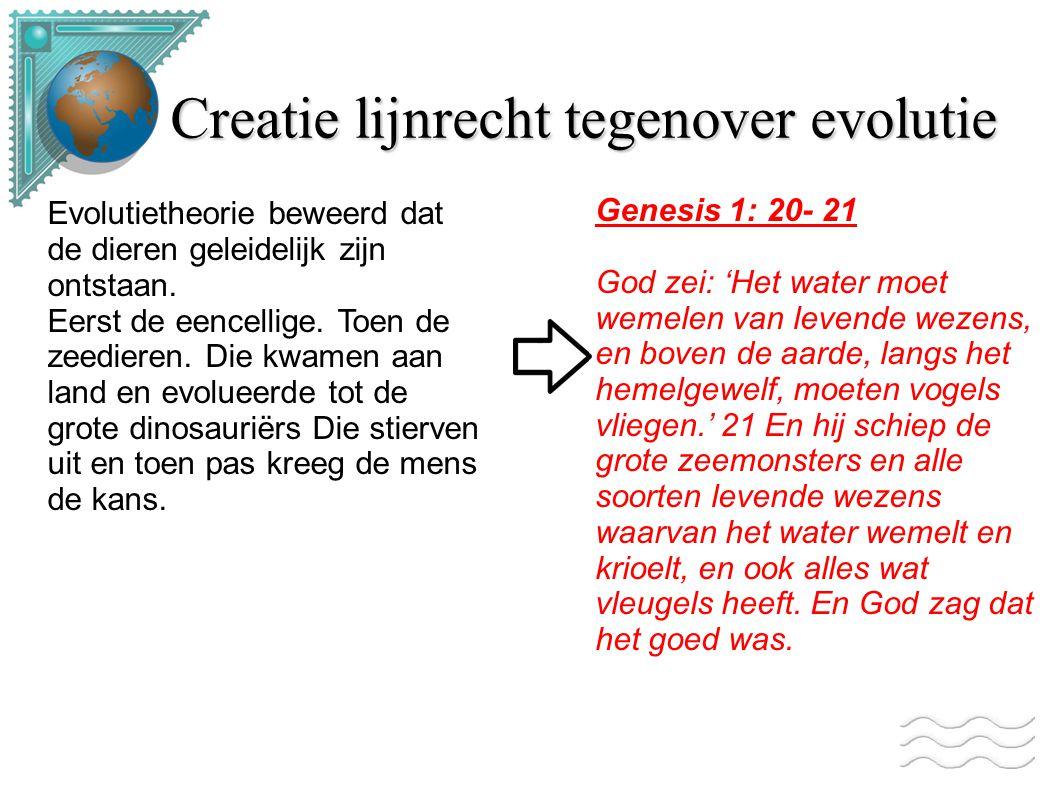 Creatie lijnrecht tegenover evolutie Evolutietheorie beweerd dat de dieren geleidelijk zijn ontstaan. Eerst de eencellige. Toen de zeedieren. Die kwam