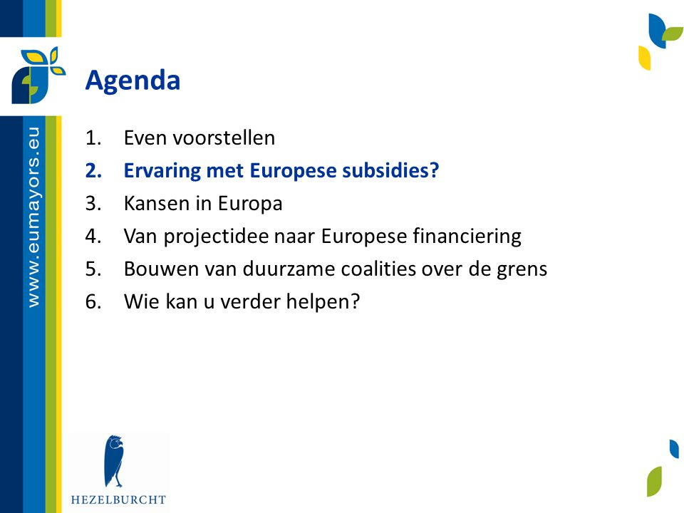 Van projectidee naar EU financiering (4) Haalbaarheidsanalyse: Inhoudelijk  Aansluiting bij doelstellingen en subsidiabele activiteiten van het programma en achterliggend beleid.