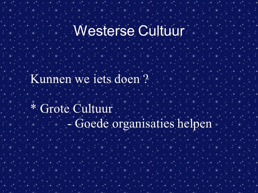 Westerse Cultuur Kunnen we iets doen ? * Grote Cultuur - Goede organisaties helpen