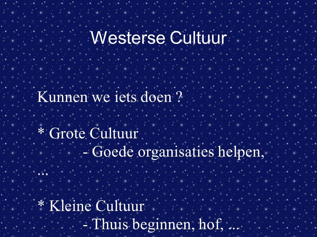 Westerse Cultuur Kunnen we iets doen ? * Grote Cultuur - Goede organisaties helpen,... * Kleine Cultuur - Thuis beginnen, hof,...