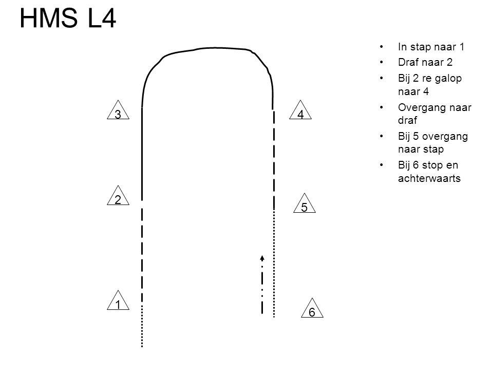 HMS L4 •In stap naar 1 •Draf naar 2 •Bij 2 re galop naar 4 •Overgang naar draf •Bij 5 overgang naar stap •Bij 6 stop en achterwaarts 34 2 1 6 5