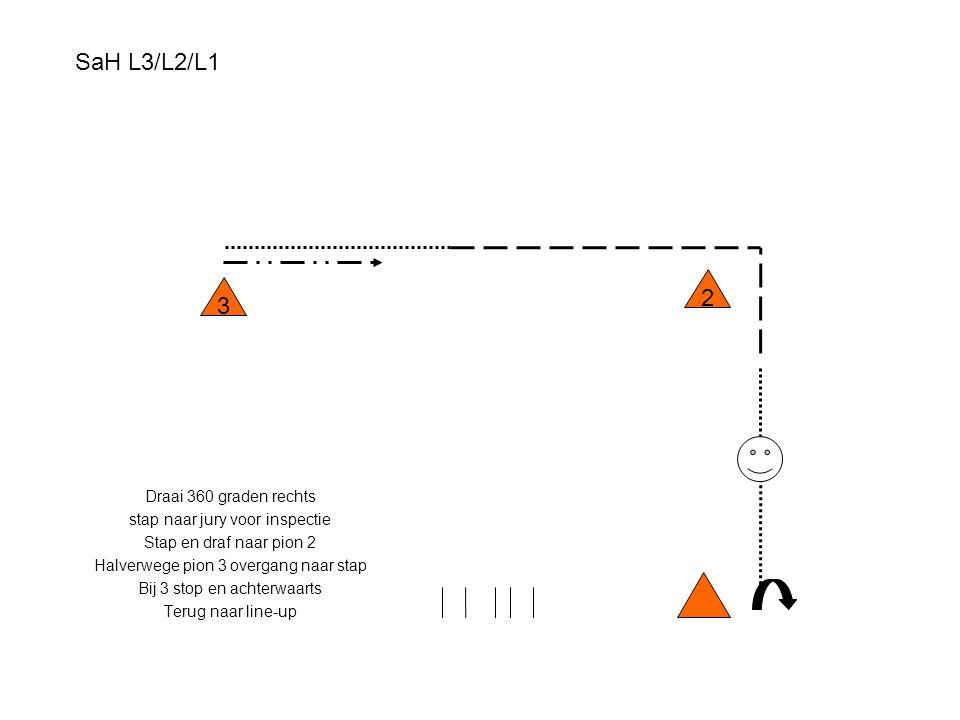 SaH L3/L2/L1 Draai 360 graden rechts stap naar jury voor inspectie Stap en draf naar pion 2 Halverwege pion 3 overgang naar stap Bij 3 stop en achterw