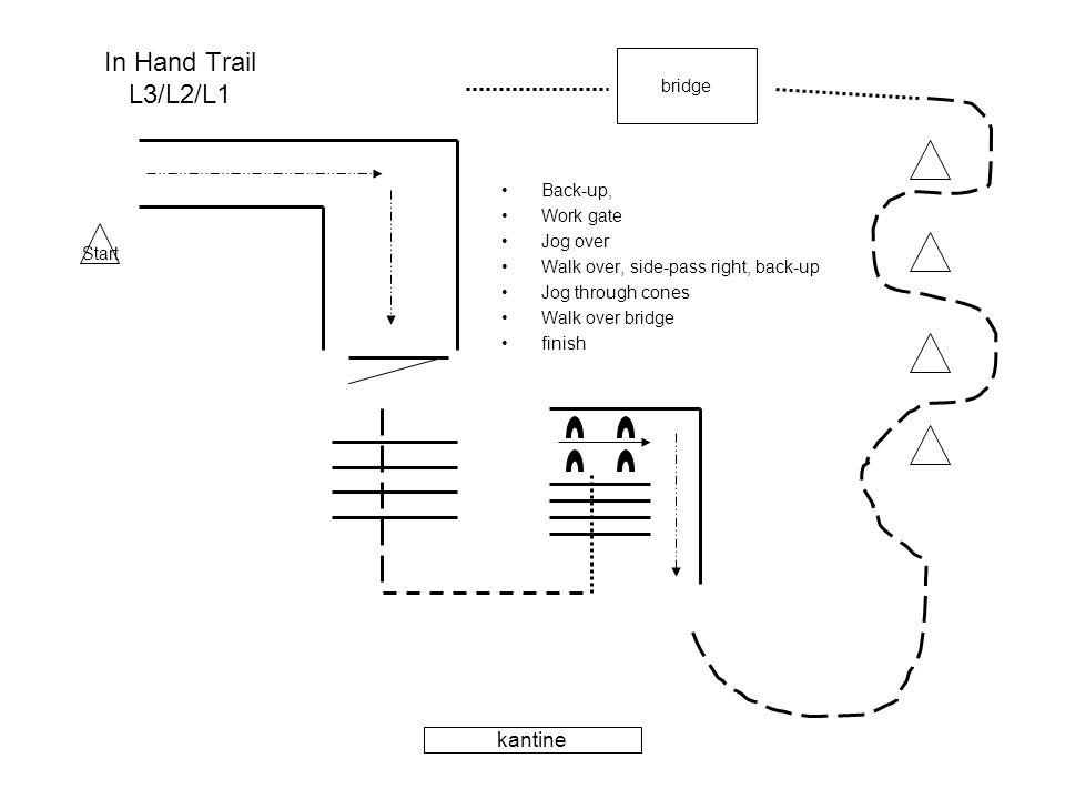 In Hand Trail L3/L2/L1 •Back-up, •Work gate •Jog over •Walk over, side-pass right, back-up •Jog through cones •Walk over bridge •finish bridge kantine