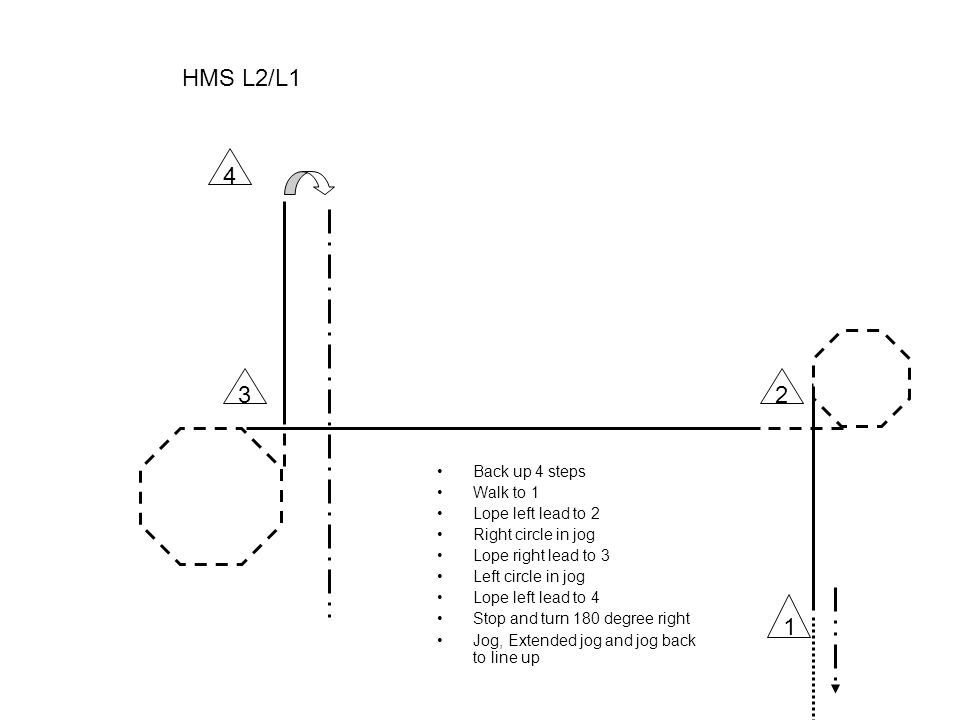 HMS L3 •Back up 4 steps •Walk to 1 •Jog and right lead to 2 •Right circle •Lope right lead to 3 •Halfway to 3 jog •Left circle in jog •jog to 4 •Turn 180 degree right •Jog, Extended jog an jog back to line up 1 23 4