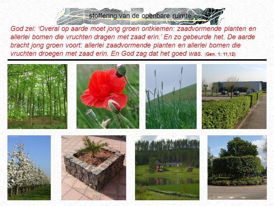 stoffering van de openbare ruimte God zei: 'Overal op aarde moet jong groen ontkiemen: zaadvormende planten en allerlei bomen die vruchten dragen met