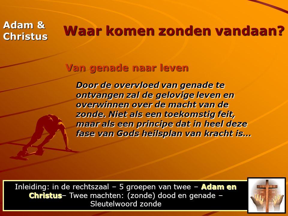 Adam & Christus Van genade naar leven Door de overvloed van genade te ontvangen zal de gelovige leven en overwinnen over de macht van de zonde. Niet a
