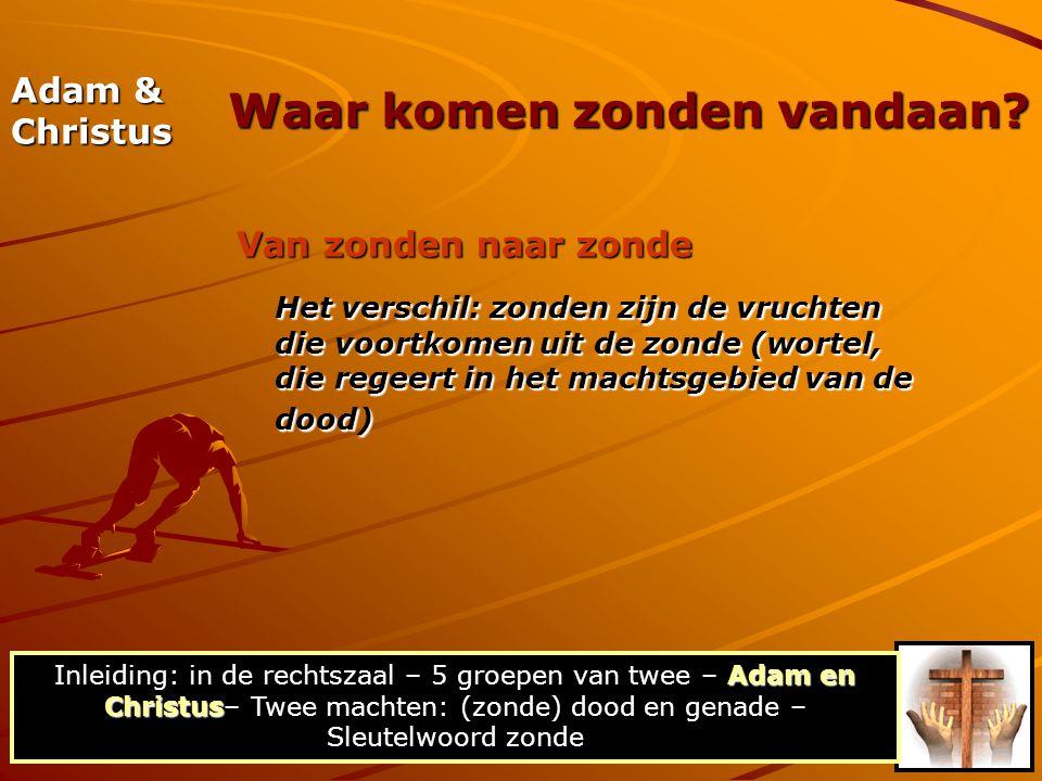 Adam & Christus Van Adams zonde naar de dood Adams overtreding bracht de dood in deze schepping (:12).