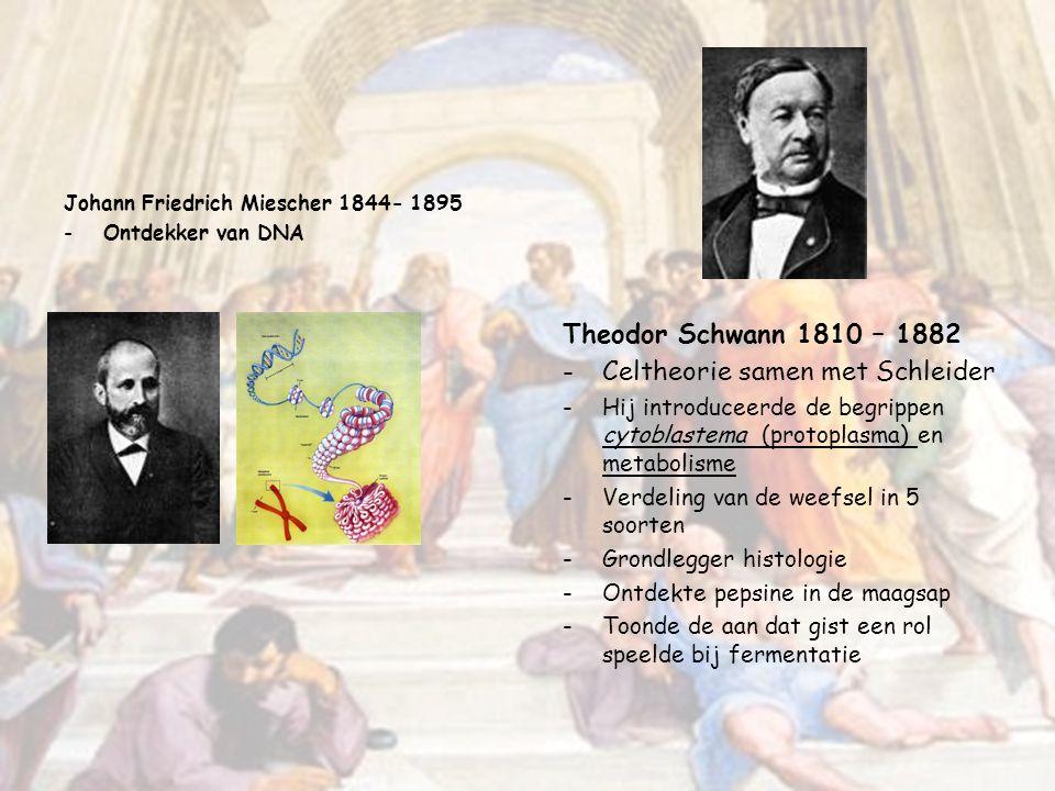 Gregor Johann Mendel 1822 – 1884 -Vader van de erfelijkheidsleer (genetica) -De wetten van Mendel -Deed zijn experimenten met erwten,en bestudeerde ze