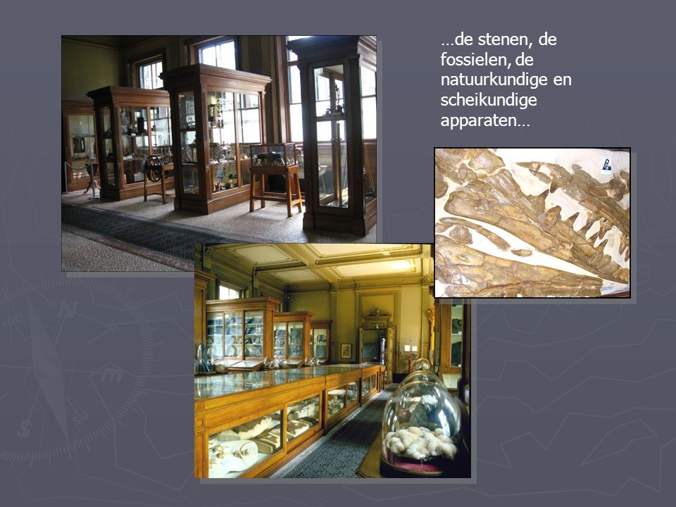 Een indrukwekkende verzameling van voornamelijk ingebonden wetenschappelijke tijdschriften, soms van eeuwen her.