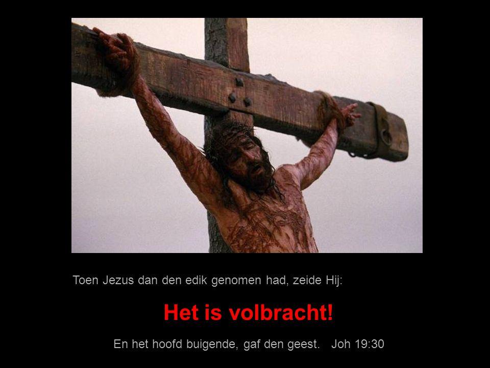 Daar stond dan een vat vol ediks, en zij vulden een spons met edik, en omlegden ze met hysop, en brachten ze aan Zijn mond. Joh 19:29