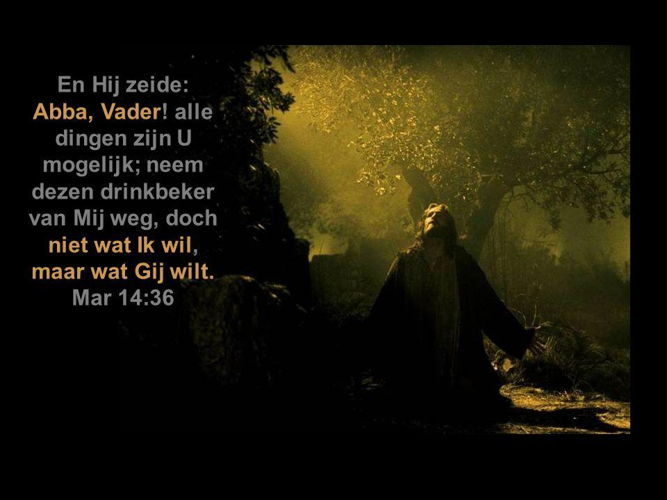 Toen Jezus dan den edik genomen had, zeide Hij: Het is volbracht.
