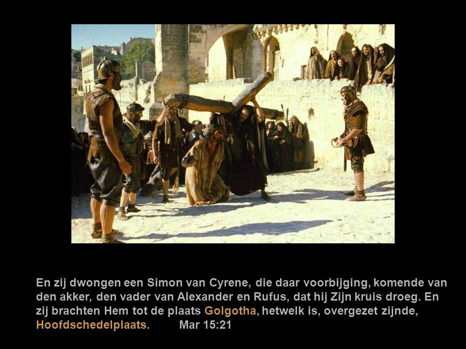 Jezus gebonden hebbende, brachten zij Hem heen, en gaven Hem aan Pilatus over. Markus 15,1