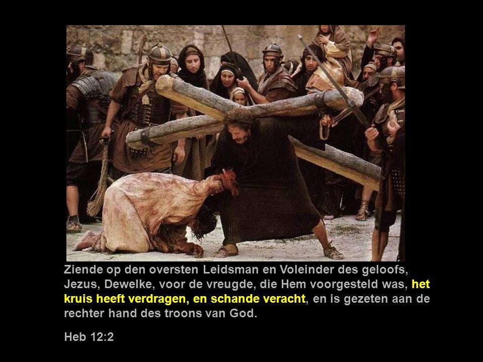 Ziende op den oversten Leidsman en Voleinder des geloofs, Jezus, Dewelke, voor de vreugde, die Hem voorgesteld was, het kruis heeft verdragen, en schande veracht, en is gezeten aan de rechter hand des troons van God.