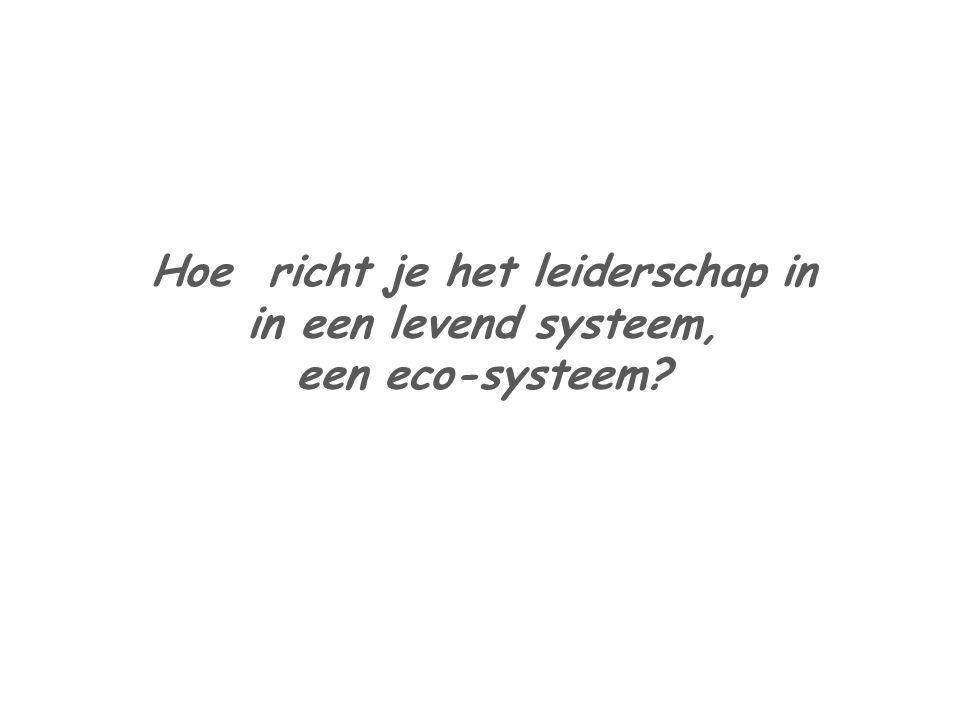 Hoe richt je het leiderschap in in een levend systeem, een eco-systeem?