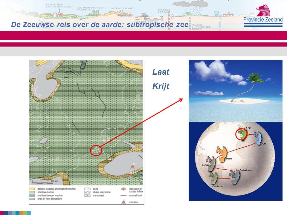 De Zeeuwse reis over de aarde: subtropische zee Laat Krijt