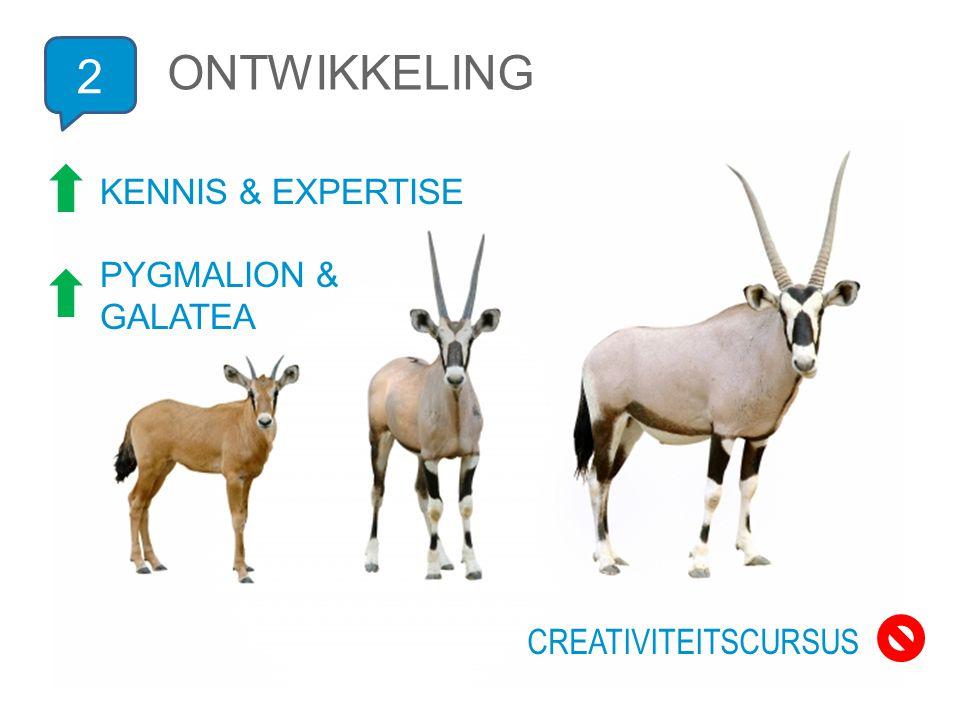 2 ONTWIKKELING KENNIS & EXPERTISE PYGMALION & GALATEA CREATIVITEITSCURSUS