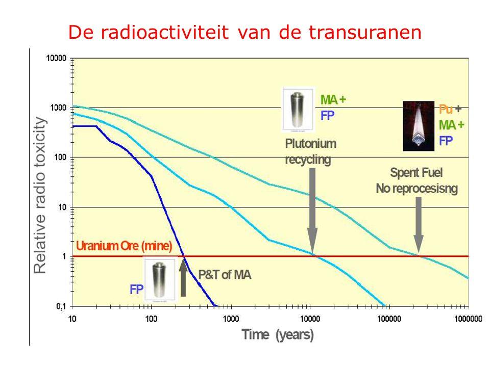 De radioactiviteit van de transuranen