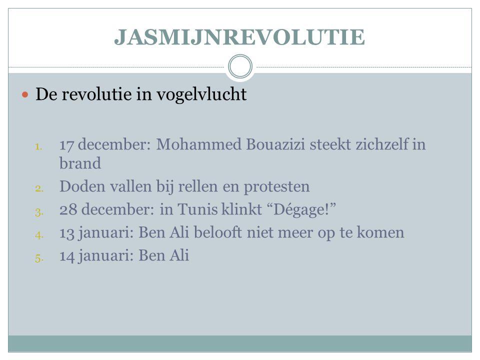 JASMIJNREVOLUTIE  De revolutie in vogelvlucht 1.