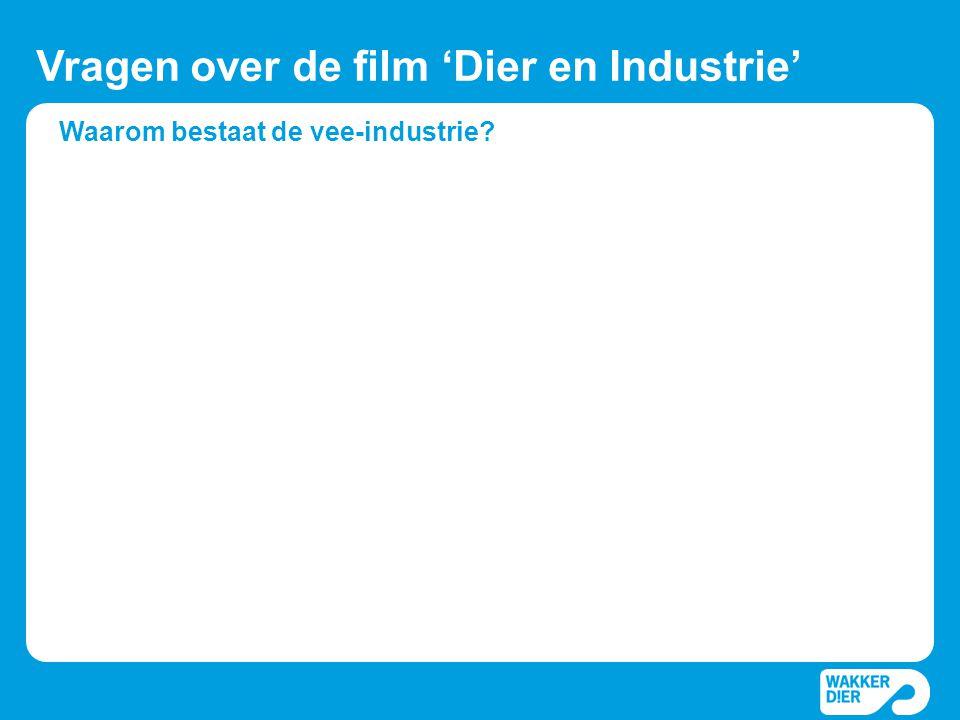 Waarom bestaat de vee-industrie? Vragen over de film 'Dier en Industrie'