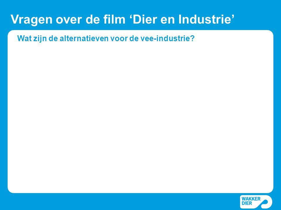 Wat zijn de alternatieven voor de vee-industrie? Vragen over de film 'Dier en Industrie'