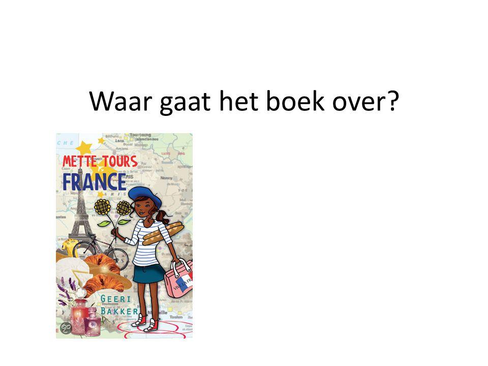 Waar gaat het boek over?