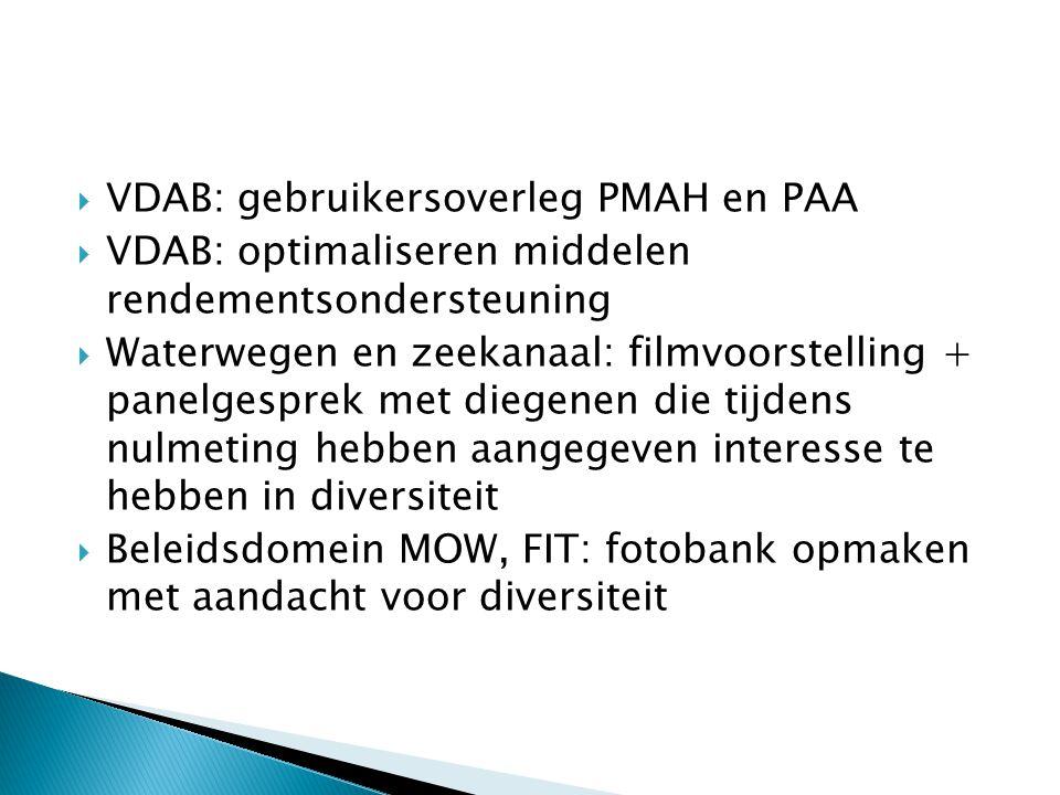  VDAB: gebruikersoverleg PMAH en PAA  VDAB: optimaliseren middelen rendementsondersteuning  Waterwegen en zeekanaal: filmvoorstelling + panelgesprek met diegenen die tijdens nulmeting hebben aangegeven interesse te hebben in diversiteit  Beleidsdomein MOW, FIT: fotobank opmaken met aandacht voor diversiteit
