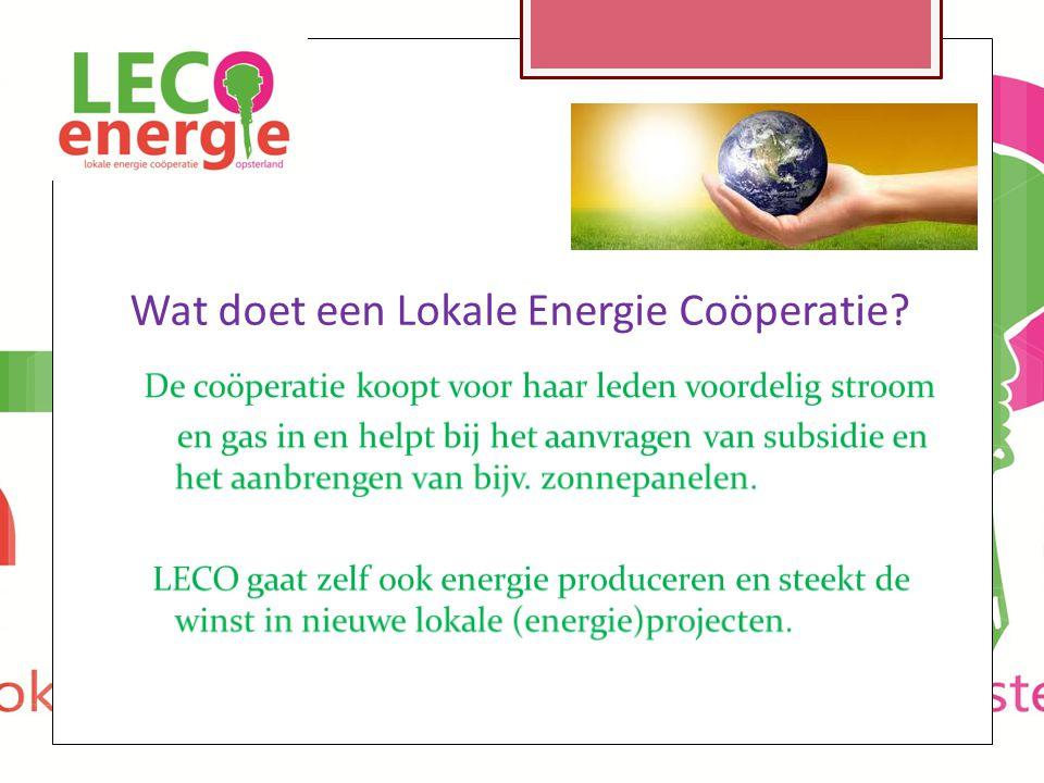 Wat doet een Lokale Energie Coöperatie?
