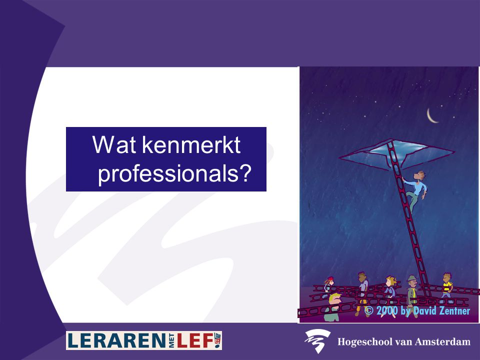 Wat kenmerkt professionals?