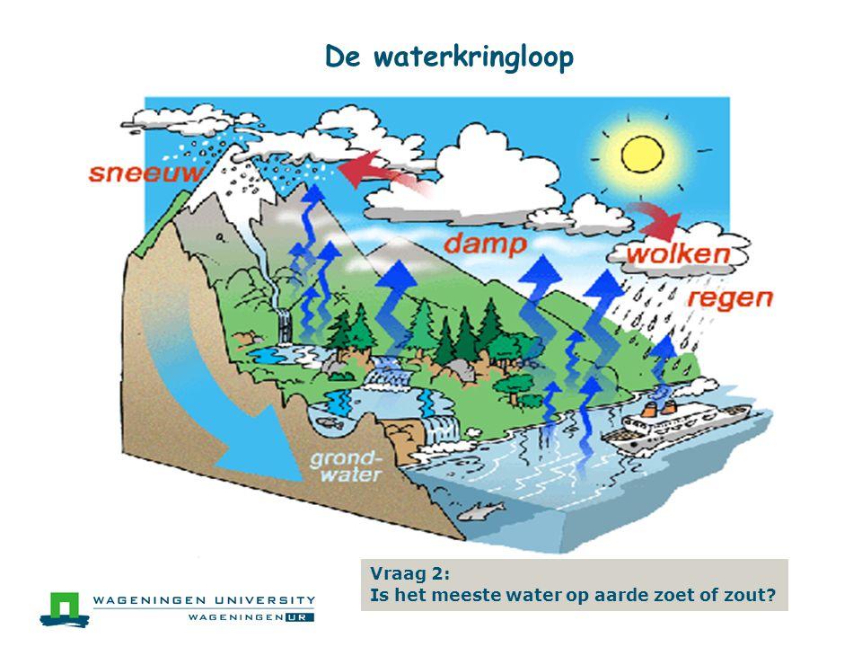 De waterkringloop Vraag 2: Is het meeste water op aarde zoet of zout?