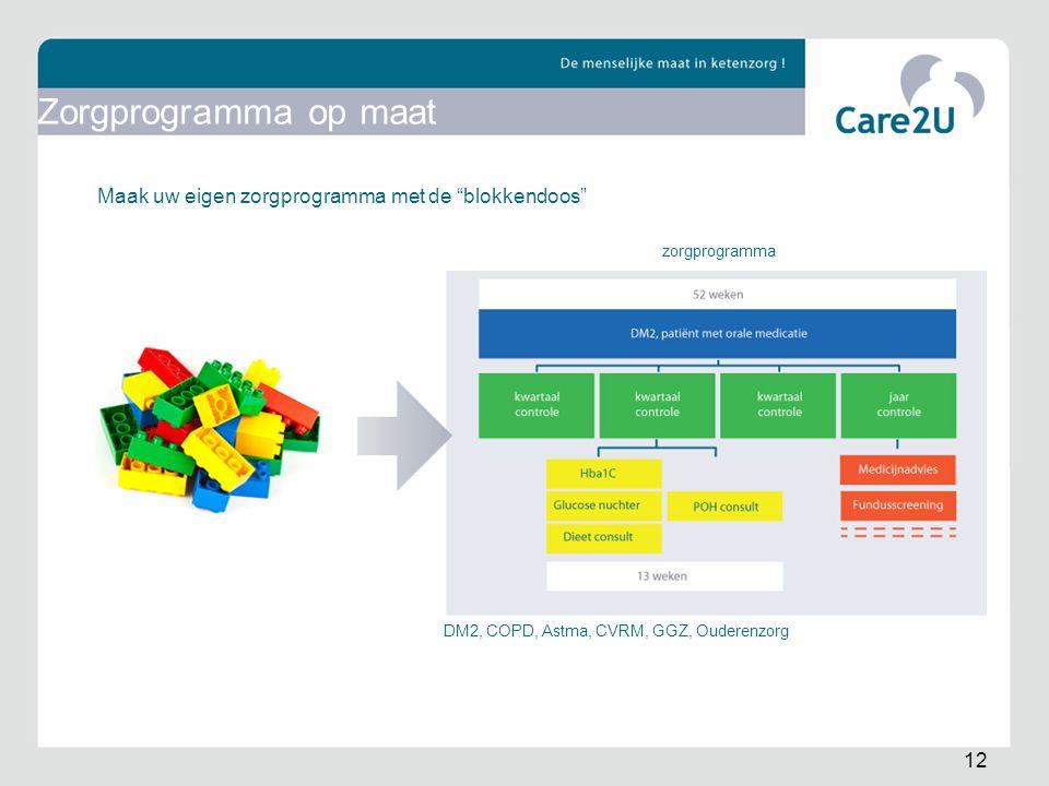 """Maak uw eigen zorgprogramma met de """"blokkendoos"""" zorgprogramma DM2, COPD, Astma, CVRM, GGZ, Ouderenzorg 12 Zorgprogramma op maat"""
