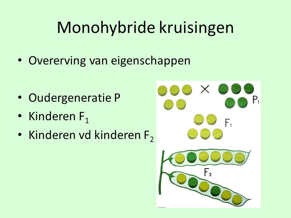 Monohybride kruisingen • Overerving van eigenschappen • Oudergeneratie P • Kinderen F 1 • Kinderen vd kinderen F 2