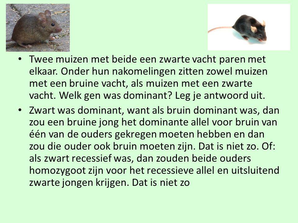 • Twee muizen met beide een zwarte vacht paren met elkaar. Onder hun nakomelingen zitten zowel muizen met een bruine vacht, als muizen met een zwarte