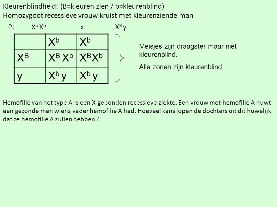 Kleurenblindheid: (B=kleuren zien / b=kleurenblind) Homozygoot recessieve vrouw kruist met kleurenziende man P: X b X b x X B y XbXb XbXb XBXB X B X b