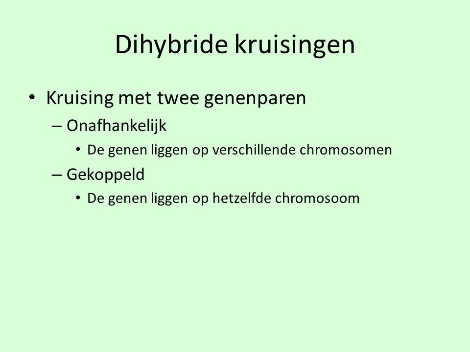 Dihybride kruisingen • Kruising met twee genenparen – Onafhankelijk • De genen liggen op verschillende chromosomen – Gekoppeld • De genen liggen op he