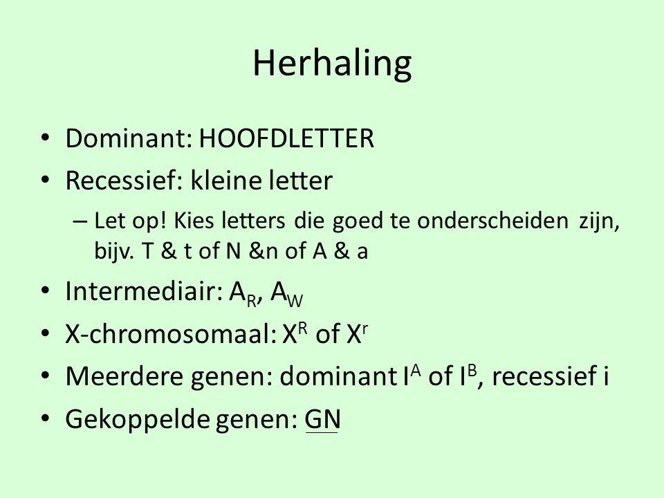 Herhaling • Dominant: HOOFDLETTER • Recessief: kleine letter – Let op! Kies letters die goed te onderscheiden zijn, bijv. T & t of N &n of A & a • Int