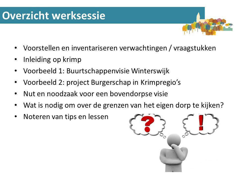Voorbeeld 1: Buurtschappenvisie W'wijk Reflectie op proces met 8 buurtschappen • Goede projectorganisatie van belang: een Stuurgroep en Themagroepen met voorzitters.