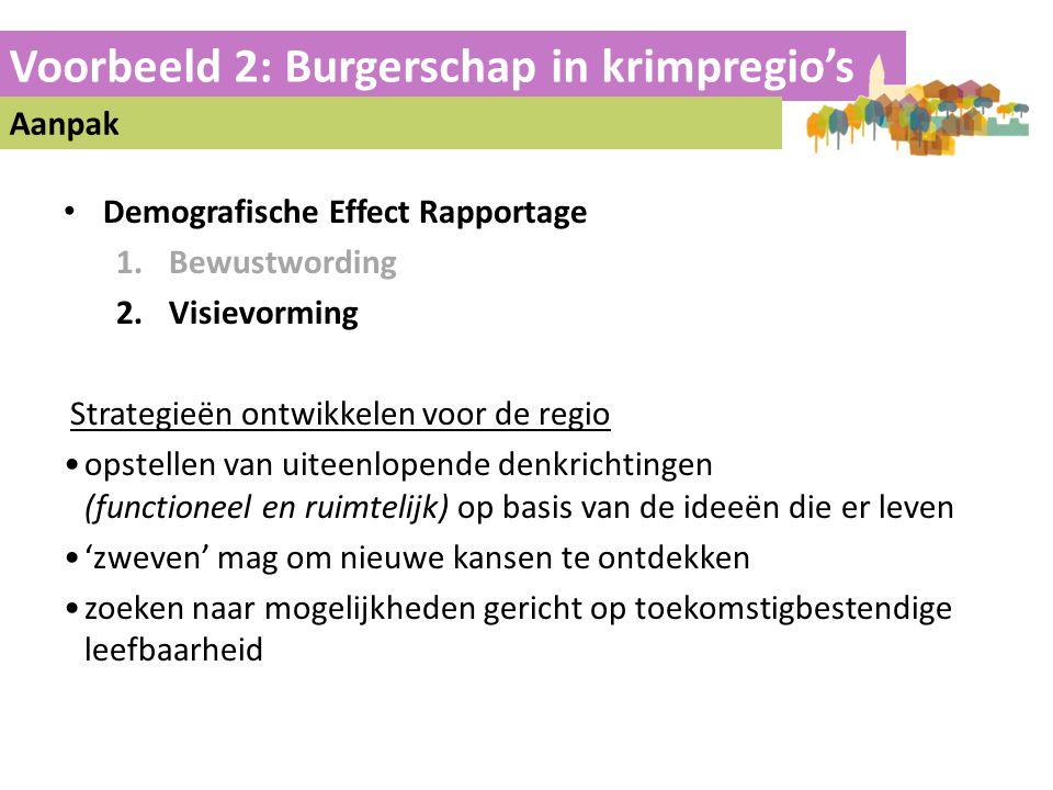 Voorbeeld 2: Burgerschap in krimpregio's Aanpak • Demografische Effect Rapportage 1.Bewustwording 2.Visievorming Strategieën ontwikkelen voor de regio