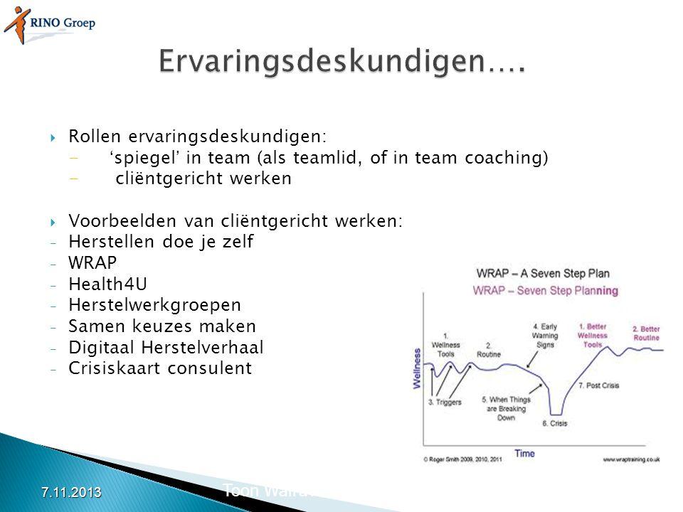  Rollen ervaringsdeskundigen: -'spiegel' in team (als teamlid, of in team coaching) - cliëntgericht werken  Voorbeelden van cliëntgericht werken: -