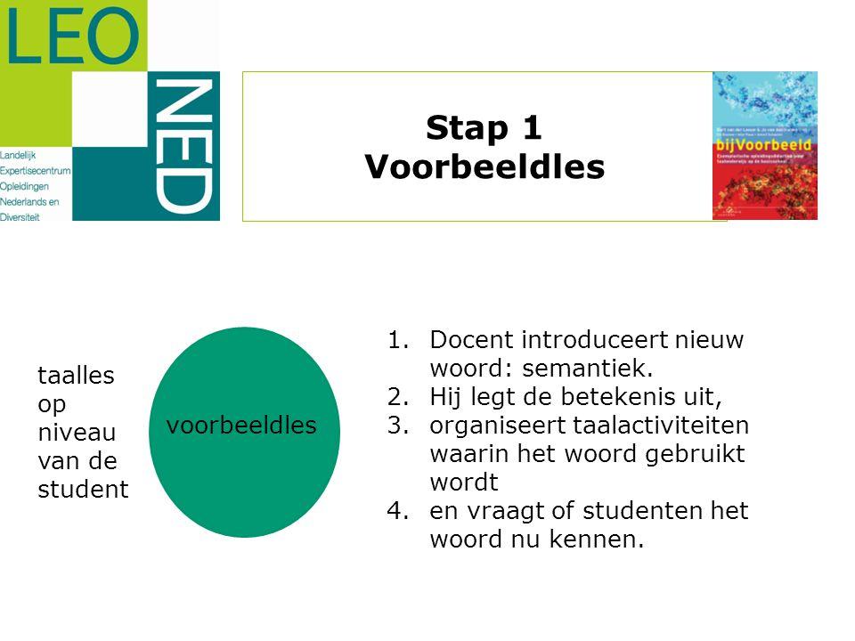 voorbeeldles taalles op niveau van de student 1.Docent introduceert nieuw woord: semantiek. 2.Hij legt de betekenis uit, 3.organiseert taalactiviteite