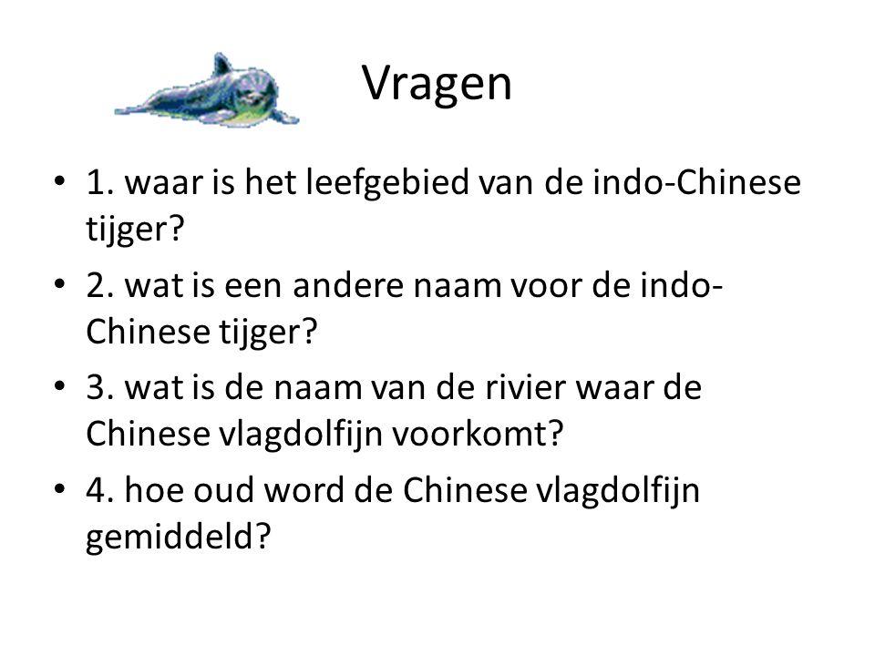 Vragen • 1. waar is het leefgebied van de indo-Chinese tijger? • 2. wat is een andere naam voor de indo- Chinese tijger? • 3. wat is de naam van de ri