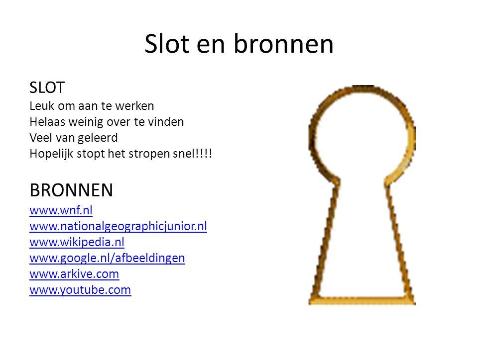 Slot en bronnen SLOT Leuk om aan te werken Helaas weinig over te vinden Veel van geleerd Hopelijk stopt het stropen snel!!!! BRONNEN www.wnf.nl www.na