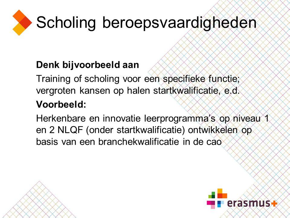 Scholing beroepsvaardigheden Denk bijvoorbeeld aan Training of scholing voor een specifieke functie; vergroten kansen op halen startkwalificatie, e.d.