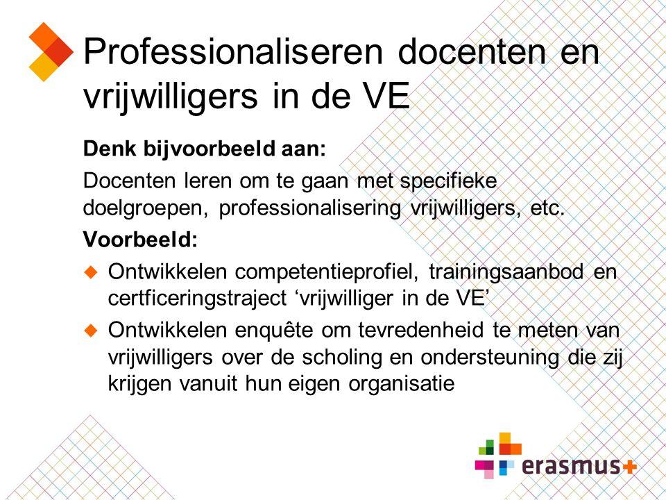 Professionaliseren docenten en vrijwilligers in de VE Denk bijvoorbeeld aan: Docenten leren om te gaan met specifieke doelgroepen, professionalisering