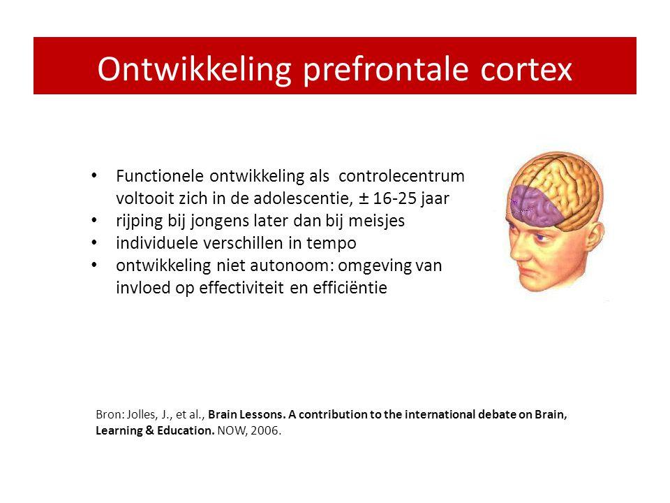 • Planning en programmering van het eigen gedrag: cognitieve controle • Probleemoplossend gedrag • Zelf geïnitieerd zoeken • Impulsremming, filtering