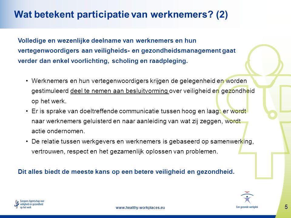 16 www.healthy-workplaces.eu Succesfactoren (2) Systematische participatie in alle managementprocessen op het gebied van veiligheid en gezondheid op het werk Scholing van managers, opzichters en vertegenwoordigers van werknemers Een cultuur waarbij het bewaken van gezondheid en veiligheid tot ieders taken behoort