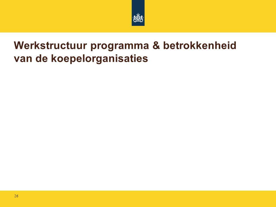 Werkstructuur programma & betrokkenheid van de koepelorganisaties 26