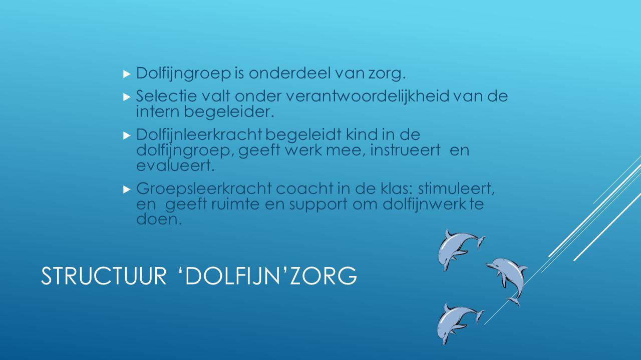 STRUCTUUR 'DOLFIJN'ZORG  Dolfijngroep is onderdeel van zorg.  Selectie valt onder verantwoordelijkheid van de intern begeleider.  Dolfijnleerkracht